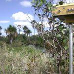 Acompanhamento e Locação de Obra em Paranaguá